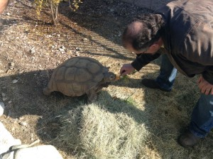 Sam the Tortoise served as an adorable testament to water-friendliness and eating your vegetables!