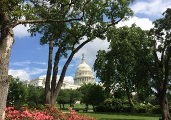 A Semester in Washington, D.C.