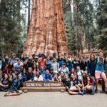 Siena's Orientation Adventure trip to Sequoia