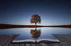 Tree behind lake with open book on dock
