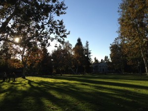 Marston Quad, my absolute favorite view on campus