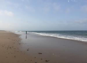 Strolling along Iberian seashores