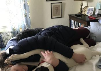 Daphne cuddling Petey
