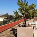 Kravis Terrace