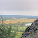landscape of central PA