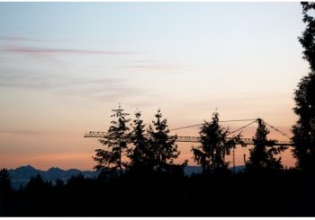 sunset with trees in foreground and crane in background